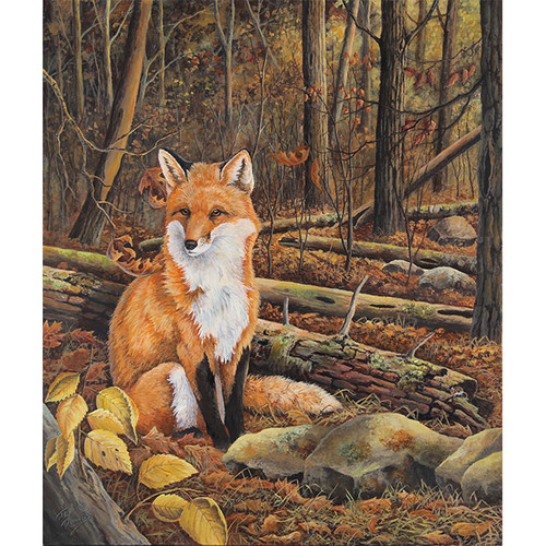 Outfoxed - DIY Painting By Numbers Kit