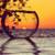 Fish Bowl Horizon Sunset - DIY Paint By Numbers Kit
