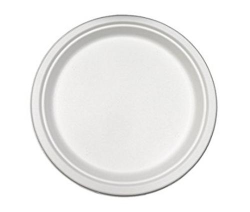 "9"" Sugarcane Fiber ""Paper"" Plates (500/Case)"