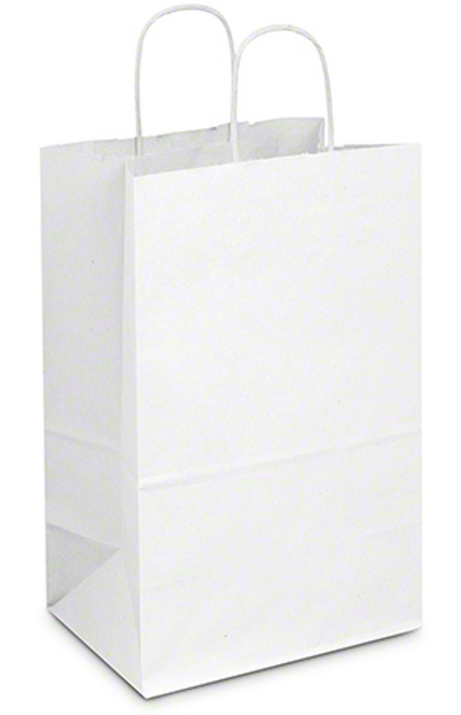 """9x6x13"""" White Rope Handle Paper Shopping Bag (250/Case)"""