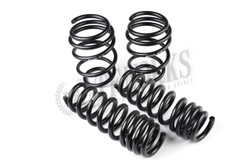 Swift Spec-R Lowering Springs Scion FRS & Subaru BRZ 4T909R