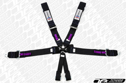 TeamTech Motorsports FIA 6 Point Camlock Bolt In Harness (Pads / Pull Tabs)
