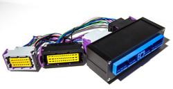 ECUMaster Nissan S14a SR20DET 64 / 76 Position PNP Adapter for EMU Black