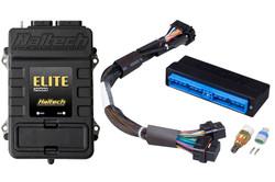 Haltech - Elite 2000 + Nissan Skyline R34 GT-T / Stagea WC34 Plug'n'Play Adaptor Harness Kit