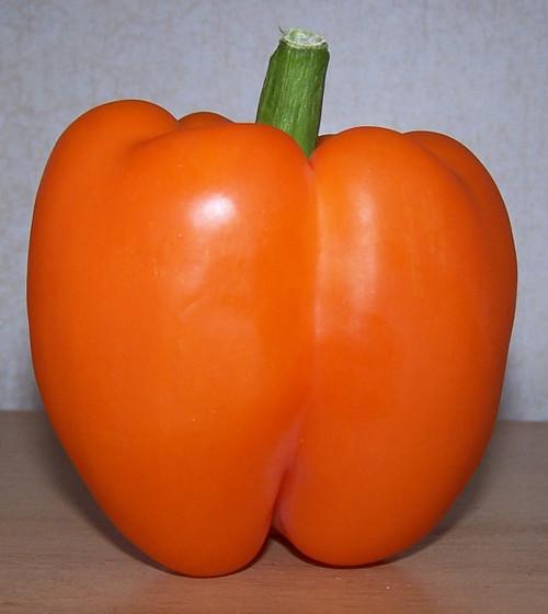 Bell Orange Sun
