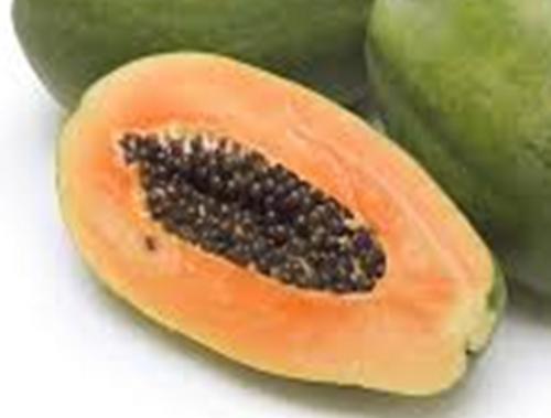 Papaya Improved Red Maradol