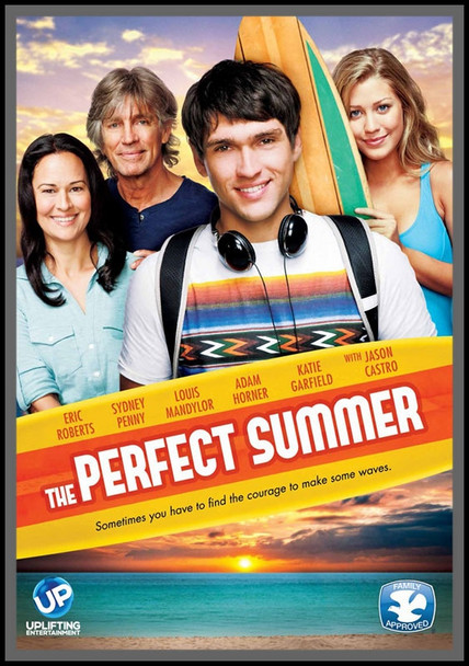 The Perfect Summer - DVD