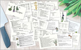 Clear Solutions, LabelEZE Recipe Cards - all together with knife