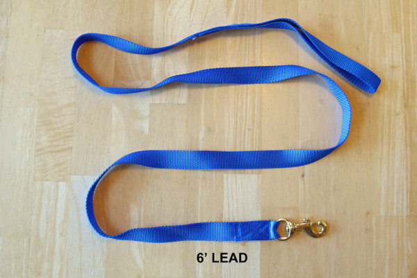 6' Lead