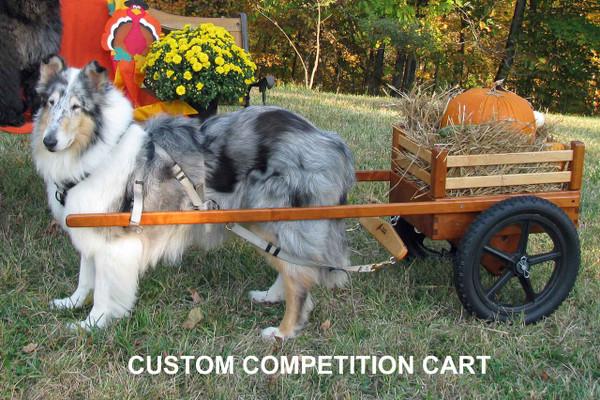 Small Custom Dog Cart