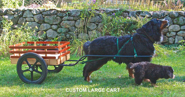 Large Custom Dog Cart