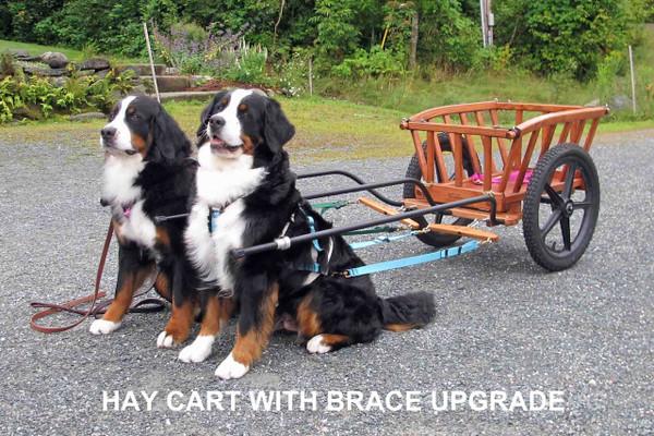 Three Shaft Brace upgrade for Hay Carts