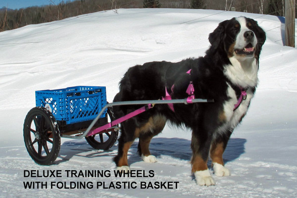 Folding Basket for Dog Cart Training Wheels