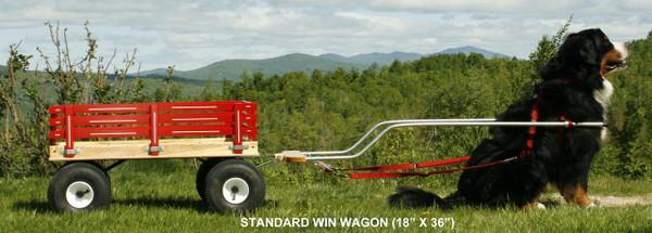 WIN Dog Wagons Starting at