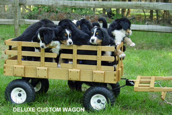 Custom Dog Wagons