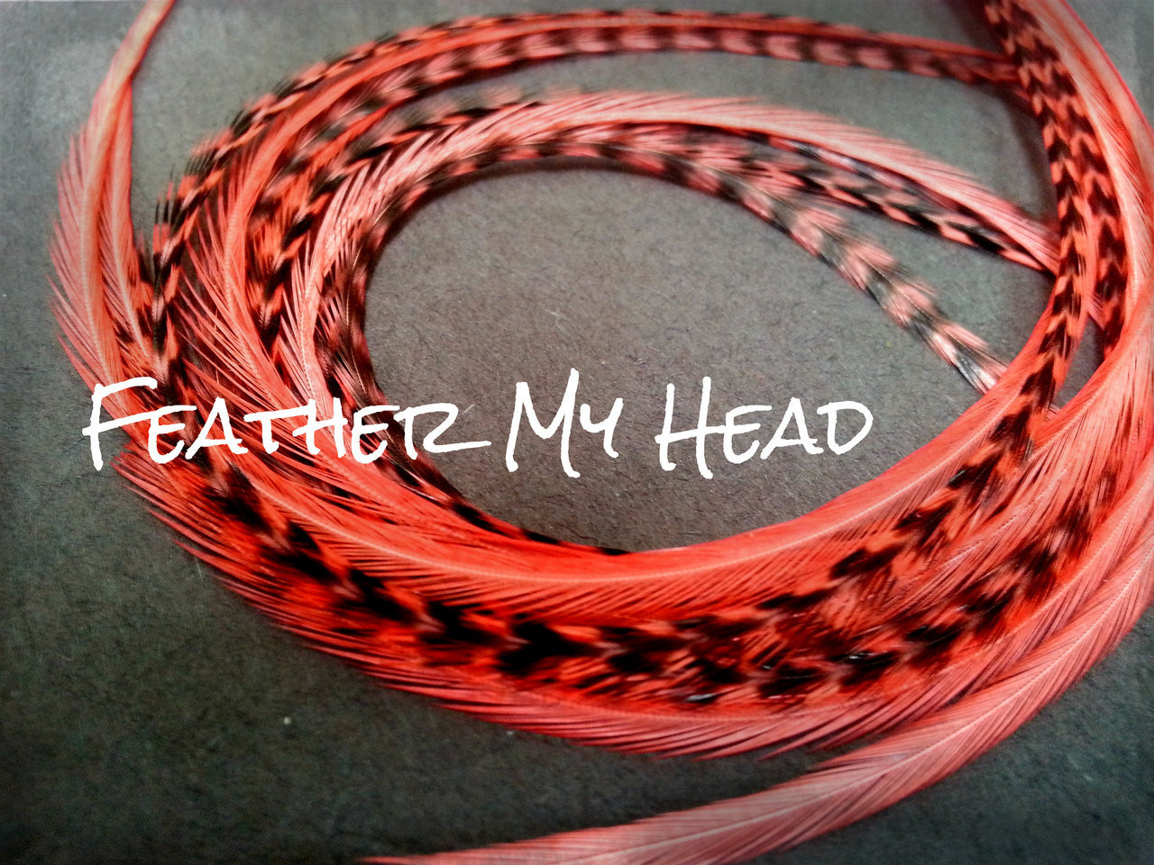 23-30cm Feather Hair Extension 9-12 In Long Grizzly//Solid 10 Pc Carmel