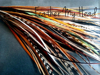 Feathers - Short 4-7 in Long (10-18cm) Thin - Grizzly Stripe And Solid Mix - Crafts Jewelry Fly Tying Hair Extensions