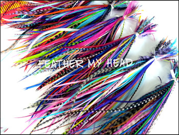 Bundles Of 100 Feathers