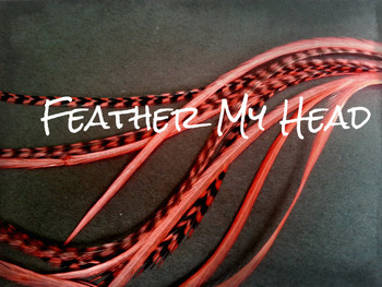Feather Hair Extensions 9 - 12 Inches Long (23-30cm) Thin Fashion Euro - Grizzly Stripe And Solid Mix - 10 Pc Salmon Pink