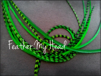Feather Hair Extension - 10 Piece 9 - 12 inches Long (23-30 cm) Grizzly Stripe / Solid Mix - Kelly Green - Brights