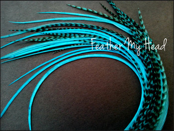 Feather Hair Extension - 10 Piece 9 - 12 inches Long (23-30 cm) Grizzly Stripe / Solid Mix - Turquoise - Brights