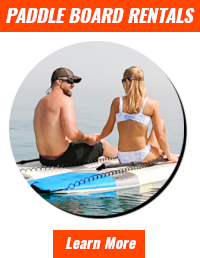 paddle-board-rentals-with-text-2.3.png