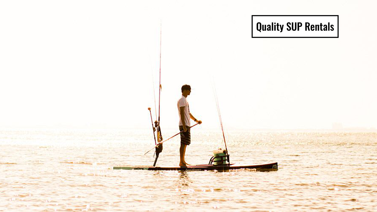 quality-paddle-board-rentals.png