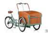 Virtue Non-Electric Schoolbus + Cargo Box Bike | Atlantis Green 6