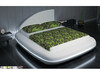 QUEEN   LAVARO  LEATHERETTE BED  WITH 15 COLOURS  LED LIGHT (CD006) - ASSORTED COLORS