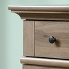 HARBOR  2 DOOR & 4 DRAWER DRESSER  - SALT OAK FINISH
