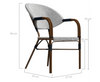 AIDEEN (SET OF 4) OUTDOOR DINING CHAIR - BROWN