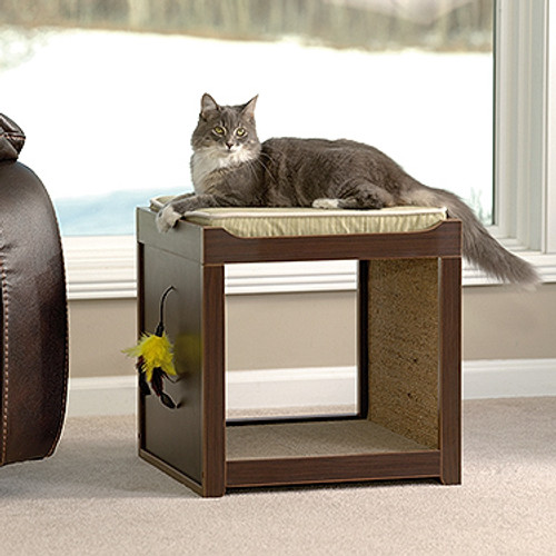 CANNERY MODERN  INTERACTIVE  CAT CUBE (MODEL:416820)  -ESPRESSO FINISH
