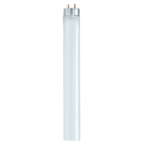 4 ft 32 Watt T8 Fluorescent Bulb, 5000 K