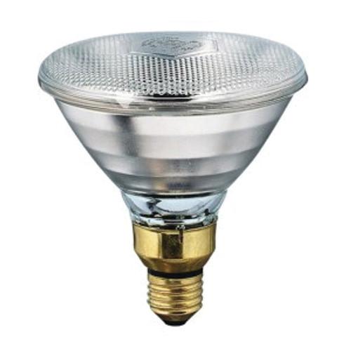 Philips 100 Watt Heavy Duty Heat Bulb
