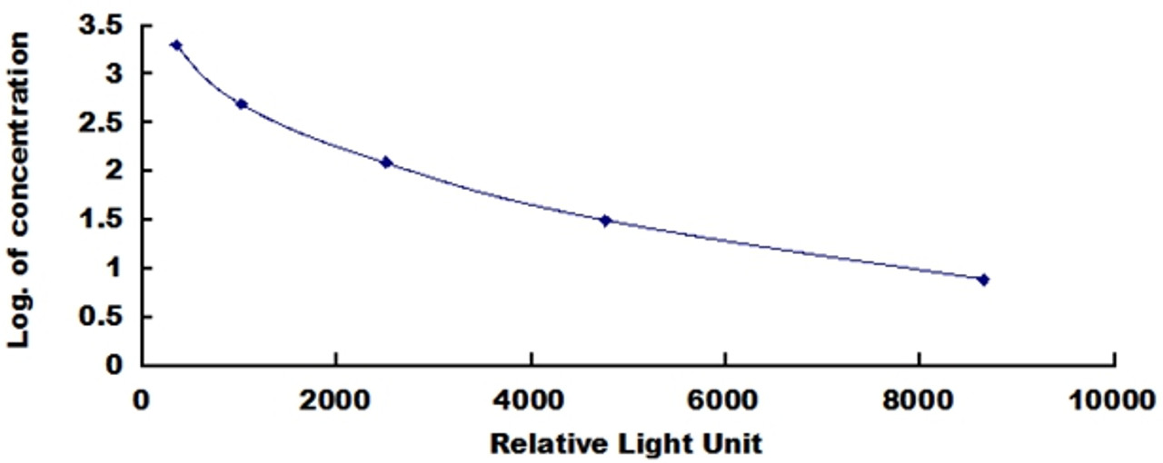 Rat Calcitonin Gene Related Peptide (CGRP)CLIA Kit