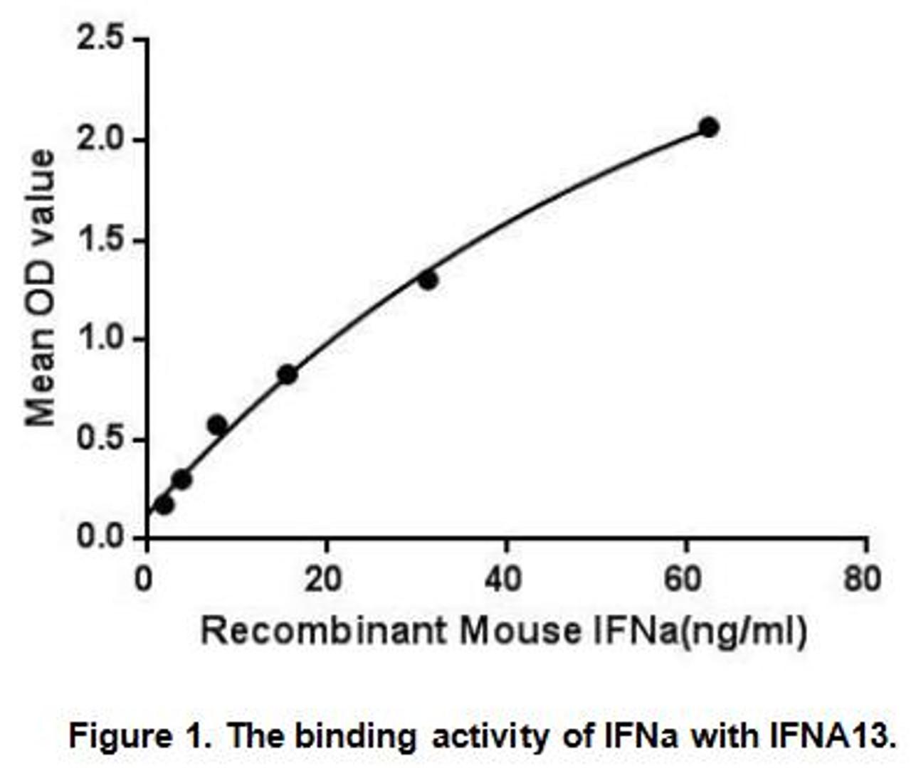 Mouse Active Interferon Alpha (IFNa)