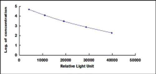 Rat Luteinizing Hormone (LH)CLIA Kit
