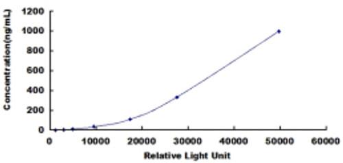 Cattle Beta-Lactoglobulin (bLg)CLIA Kit