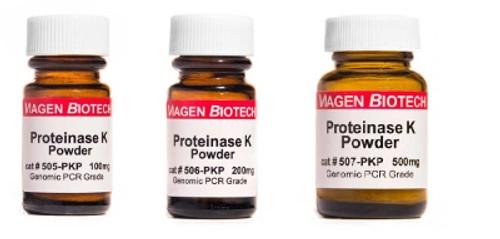 proteinase-k-powder