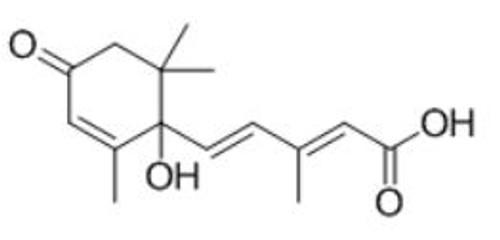 BSA Conjugated Abscisic Acid (ABA)