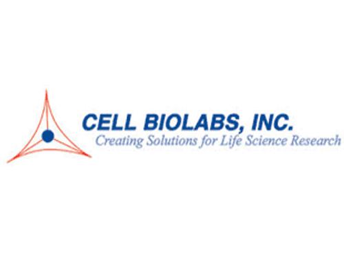 HeLa/Cas9 Cell Line