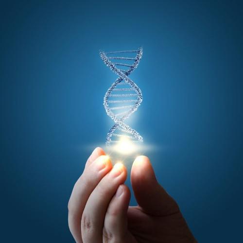 Genomepatri