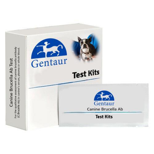 Canine Brucella Ab Test Kit
