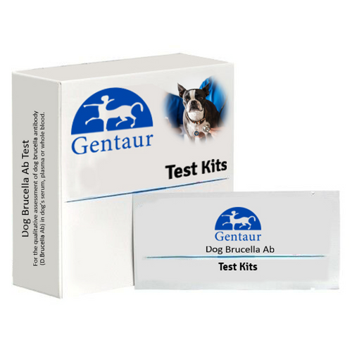 Dog Brucella Ab Test
