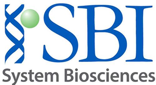 Sox2 SRR2-pGreenFire Response Reporter, pre-packaged virus