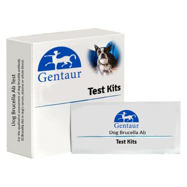 Dog Brucella Ab Test