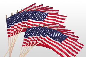 U.S. Stick Flags