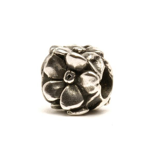 Rose, Silver