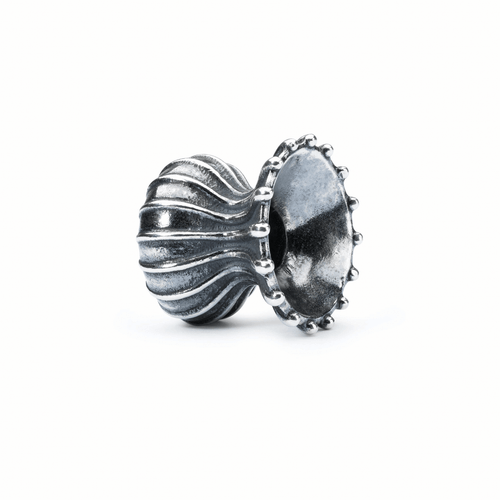 Trollbeads Capsule of Life Spacer