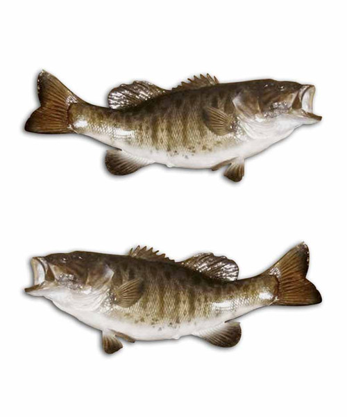 Smallmouth Bass Fishing Stickers